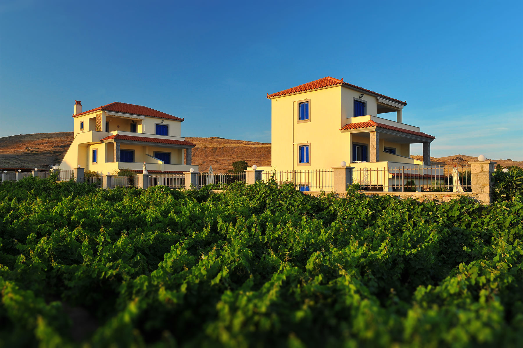 Limnos Apartments & Houses | Αρμονία Λήμνος | Ξενοδοχείο Αρμονία 1
